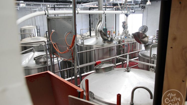 Pirate Life's brewing process in can