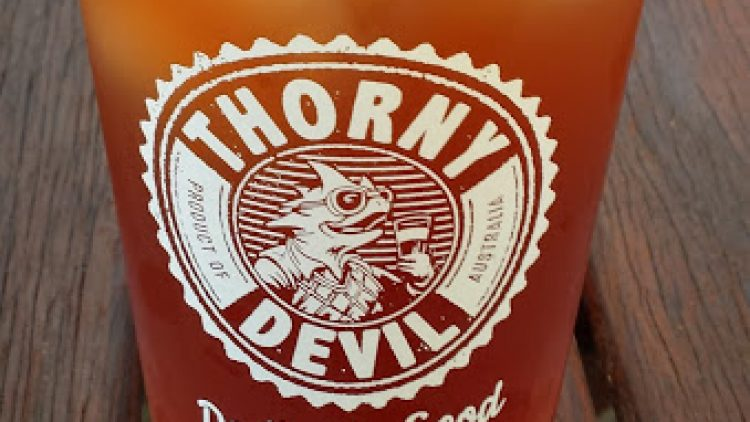 Thorny Devil, one of Australia's most awarded craft beers, is available online, at bottle shops or in your local pub, club or restaurant